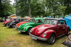 VW Beetle Jamboree